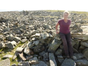 Summit of Foel Fras