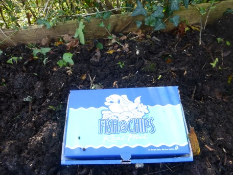 Compostable fish and chip box from Woosey's Catch of Conwy
