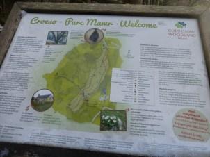 Parc Mawr woods