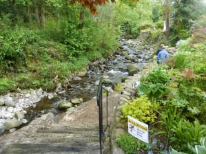 Down by the Afon Ro