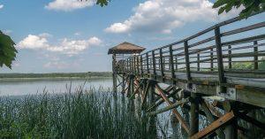 trasy rowerowe Rybnik - Łężczok