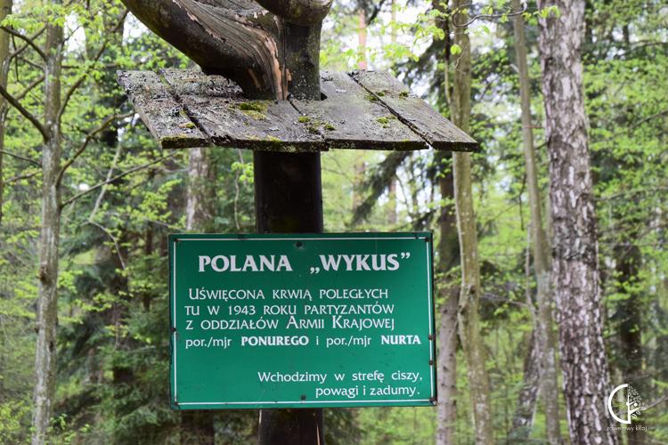 Polana Wykus