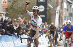 Peter Sagan zwycięski w Gandawa-Wevelgem
