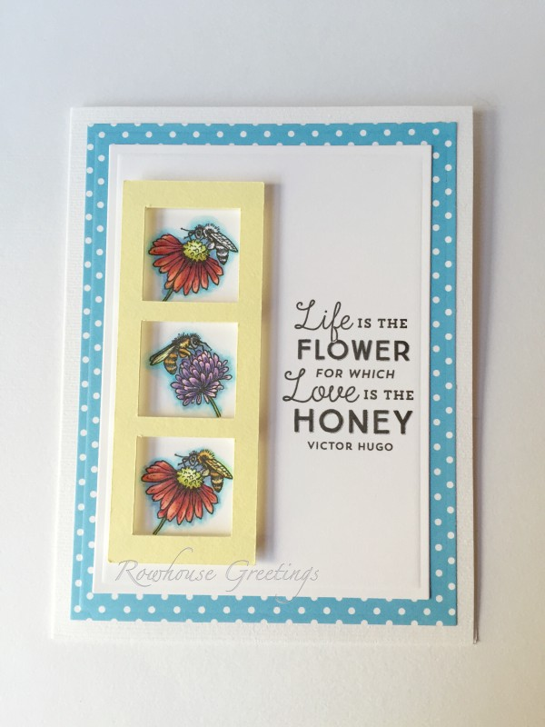 Rowhouse Greetings | Blank Notecard | Asters Abuzz by Power Poppy