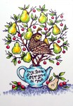 Rowhouse Greetings | Christmas | Partridge in a Pear Tree by Power Poppy