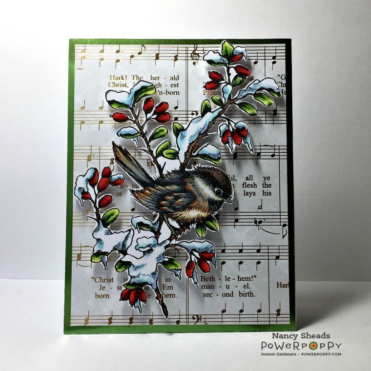 Rowhouse Greetings | Chickadee in Barberry