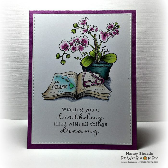 Rowhouse Greetings   Birthday   Orchid Dreams by Power Poppy