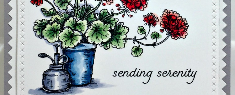 Rowhouse Greetings   Potted Geranium by Power Poppy