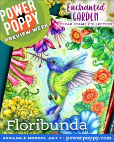 Enchanted Garden | Floribunda | Power Poppy