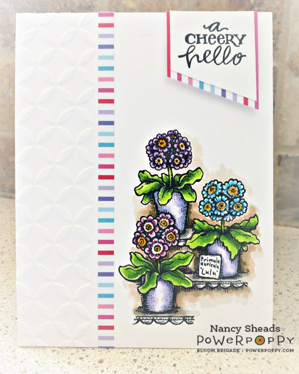 Rowhouse Greetings | Potted Primroses by Power Poppy