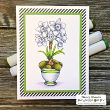 Rowhouse Greetings   Mossy Pots with Paperwhites: Accent Pieces Digital Stamp Set by Power Poppy