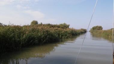 """Danube delta channel """"Dunavăţ"""" which lead to Razim lake."""