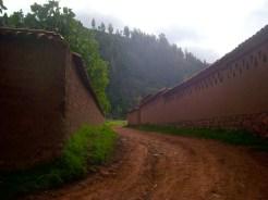 The road towards the hacienda