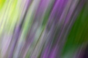 Purple Waterfall by Roxanne Darling