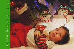 Preston - Christmas