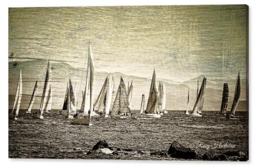 Race Day Van Isle 360 Yacht Race Photography by Roxy Hurtubise