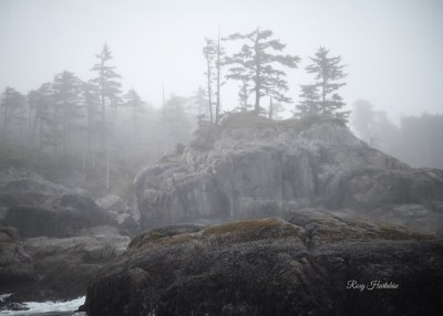West Coast Landscape photography by Roxy Hurtubise