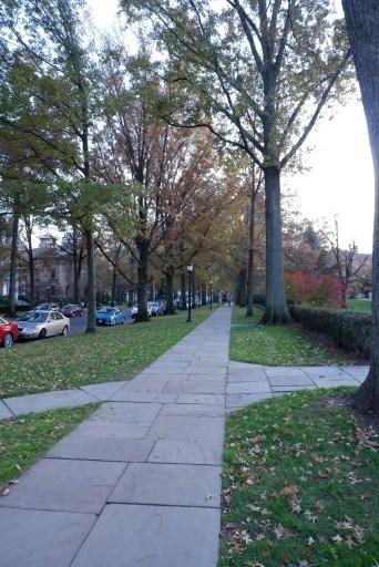 Hillhouse Ave