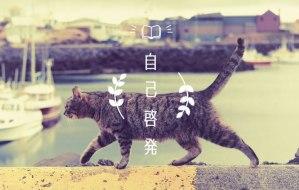 自己啓発, 猫, 読書, 本