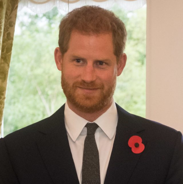 Millions pledged for landmine fight after Prince Harry's tribute to Diana