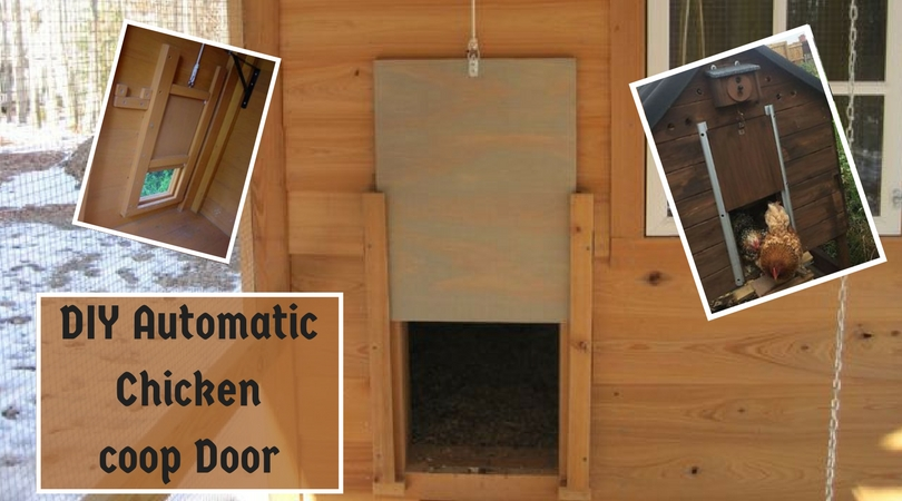 DIY Automatic Chicken coop Door