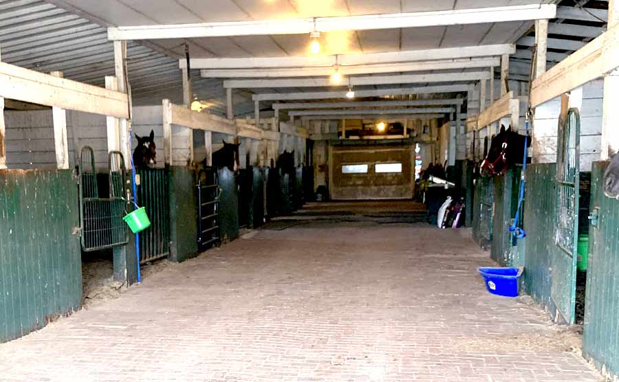 another horse boarding stall view