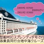 超激安、業界人も太鼓判!てるみくらぶ 憧れの東地中海クルーズ12日間  【MSCシンフォニア】