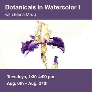 Botanicals in Watercolor I @ Art in the Valley