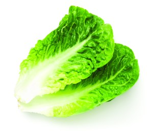 Lettuces And Greens Types And How To Use Them Royal Examiner