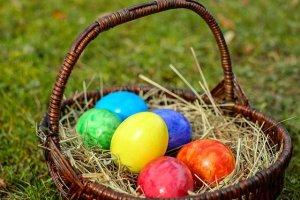 Egg-stravaganza! @ Sky Meadows State Park