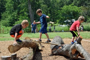National Kids to Parks Day @ Sky Meadows State Park