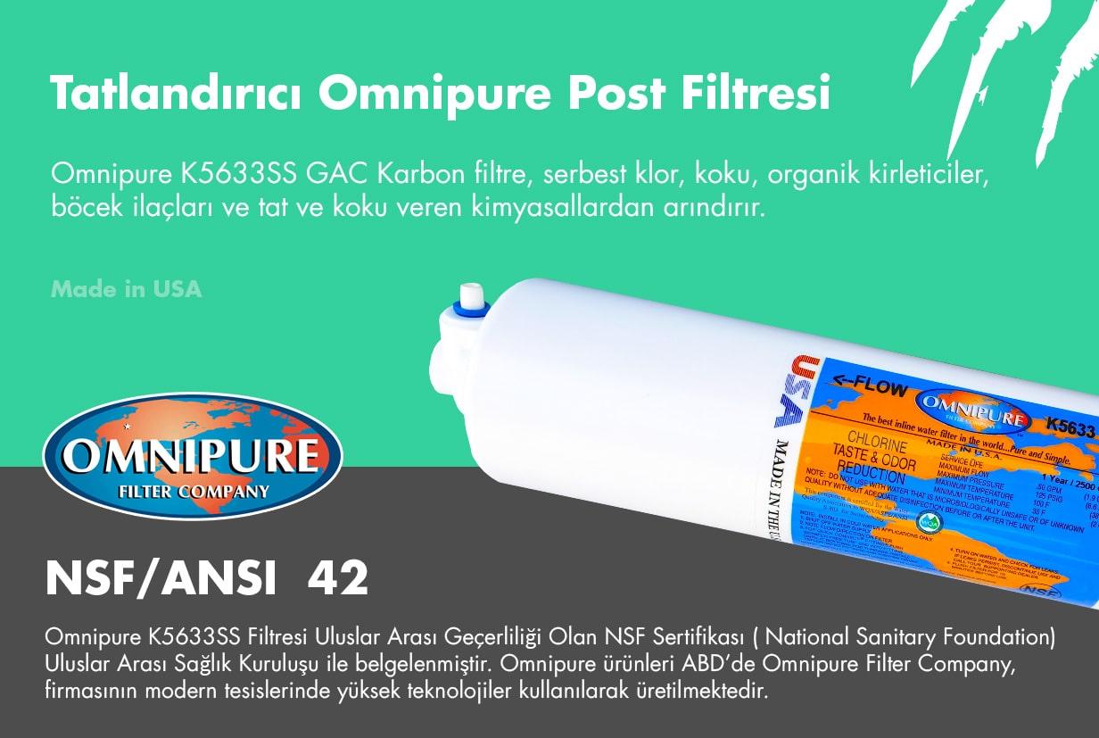 Omnipure K5633SS post karbon filtresi