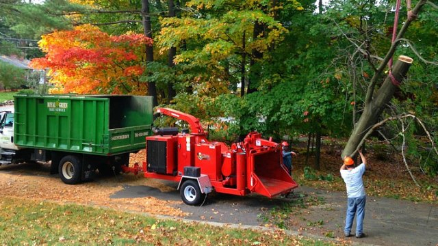 Royal Green Tree Service chipper
