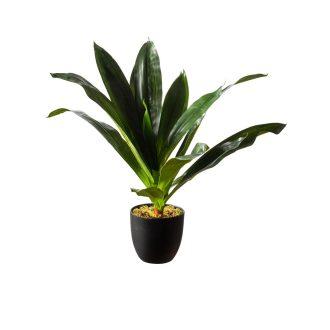 1-artificial-dracaena-plant