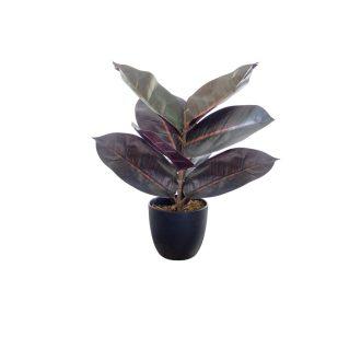 1-artificial-rubber-plant
