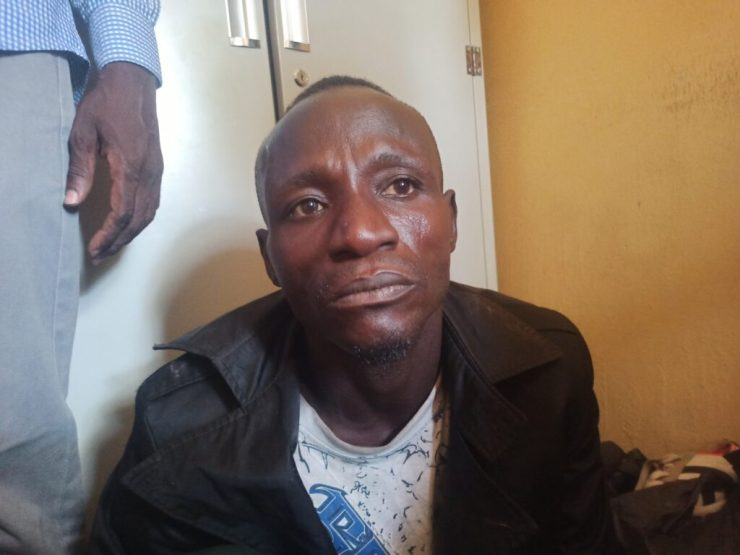 I sold 6,000 dead poultry meat to Borno residents for 5 years, says suspect