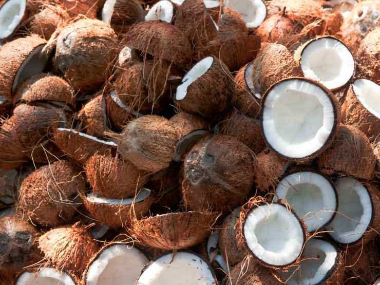 Nigeria generated $150m from coconut oil in 2020- Minister
