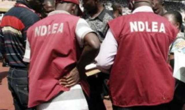 NDLEA charges 28yr-old man to court over alleged drug trafficking