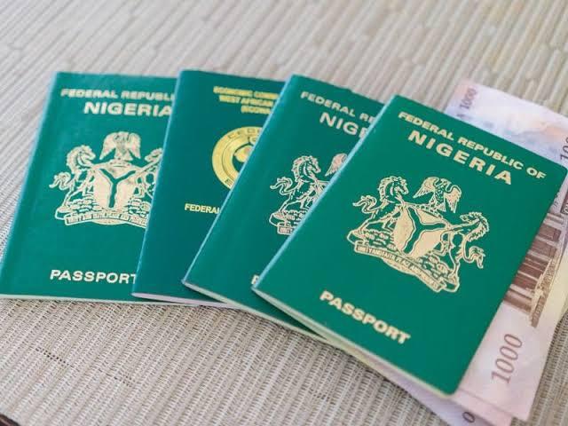 Immigration reopens passport application portal