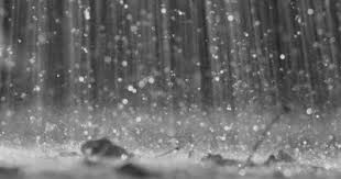 Katsina witnesses highest rainfall in a single day in 100 Years