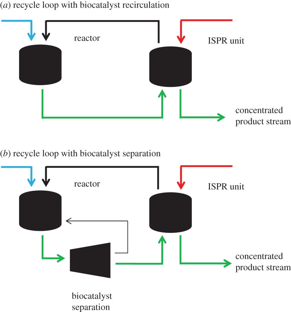Integrating Protein Engineering With Process Design For