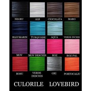 culorile_lovebird_2_1_4_1_9_1