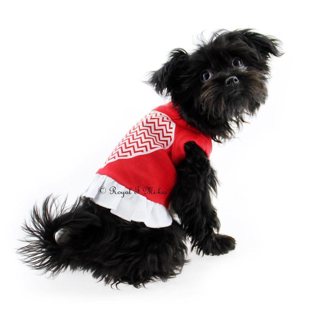 Mi-Ki Puppy Breeder in CO