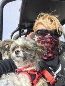 Hudson the Mi-ki loves riding in his dune buggy!