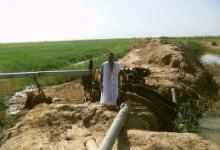 Photo of اترارزة: الحكومة تقرر تحمل خسائر المزارعين في الضفة