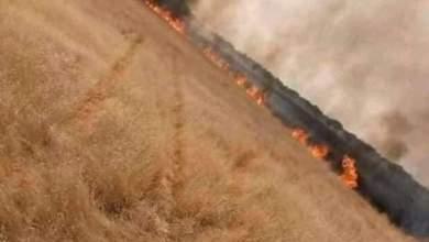صورة كوبني: حريق بمراعي قرية اگرج و نائب المقاطعة تطالب الحكومة بتدابير أكثر وقائية