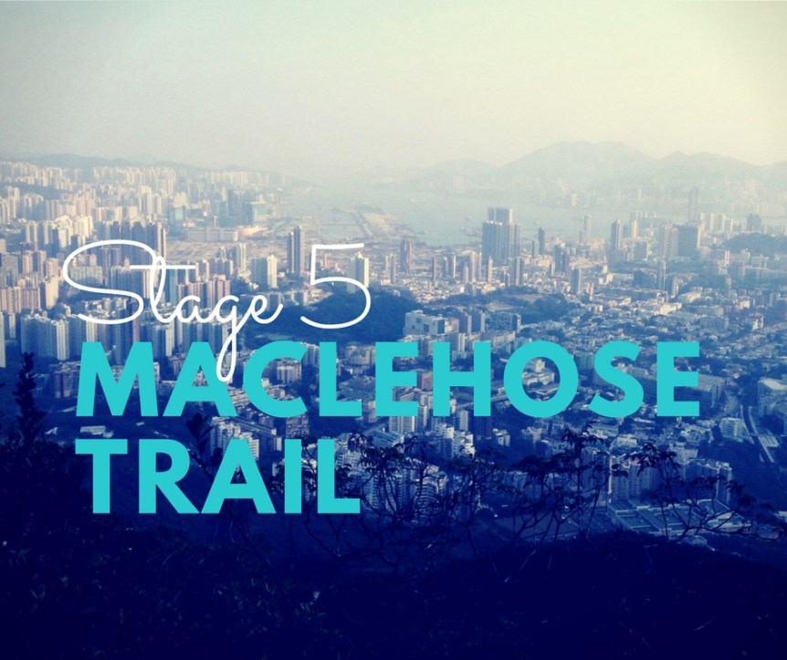 MacLehose Trail, Stage 5