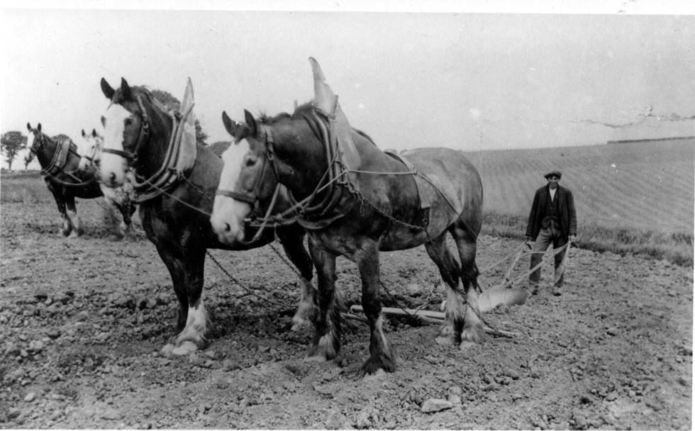 plowing