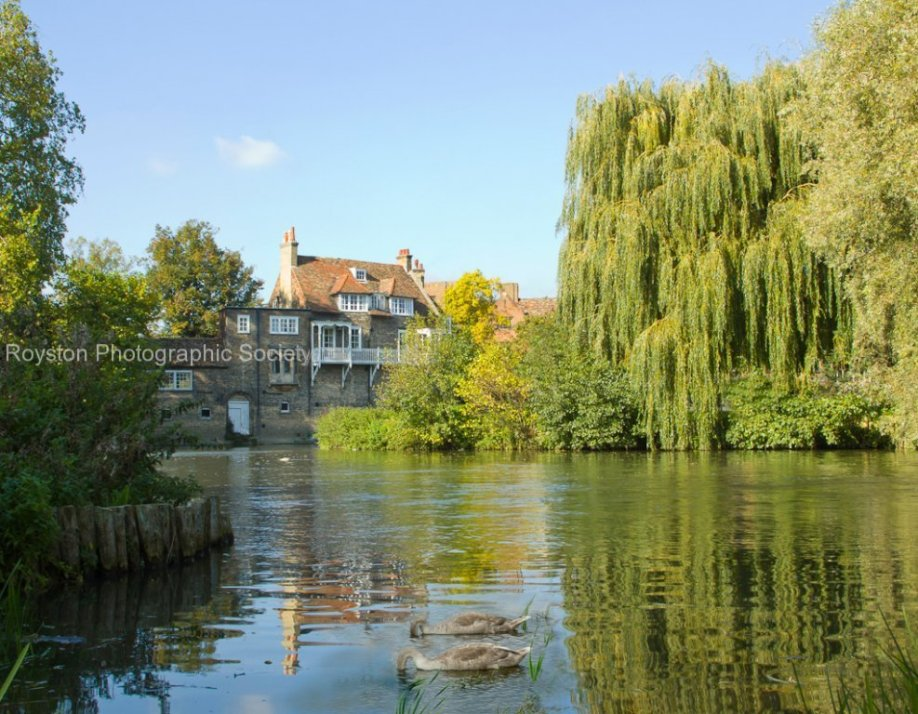 mill pond Cambridge
