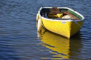 yellow-reflection-wells-sue-hartga